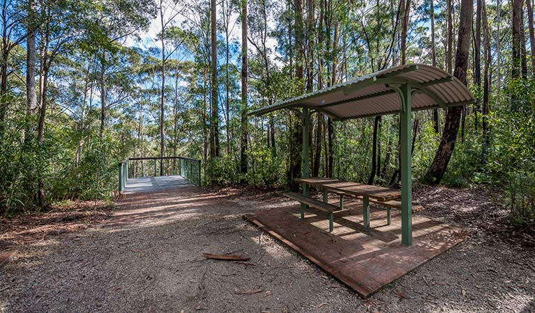 Big Nellie lookout and picnic area - Accommodation Batemans Bay