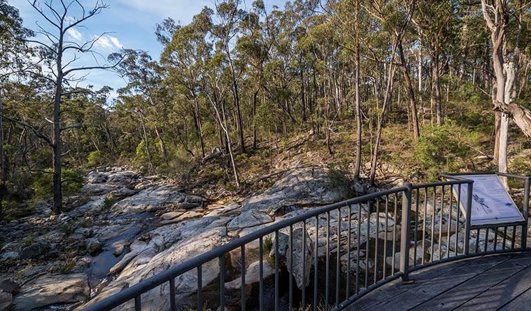 Myanba Gorge walking track - Accommodation Batemans Bay