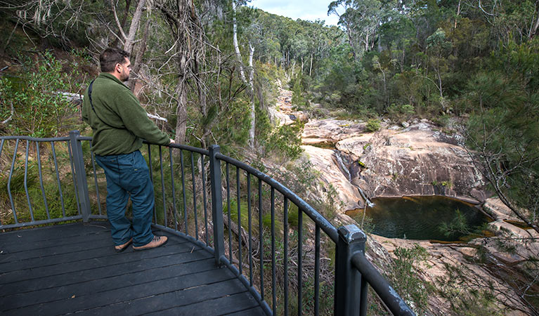 Biamanga National Park - Accommodation Batemans Bay