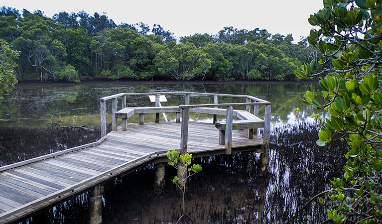 Walk on Water walking track - Accommodation Batemans Bay