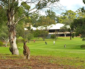Pambula Merimbula Golf Club - Accommodation Batemans Bay