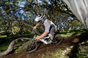 All Terrain Cycles - Accommodation Batemans Bay