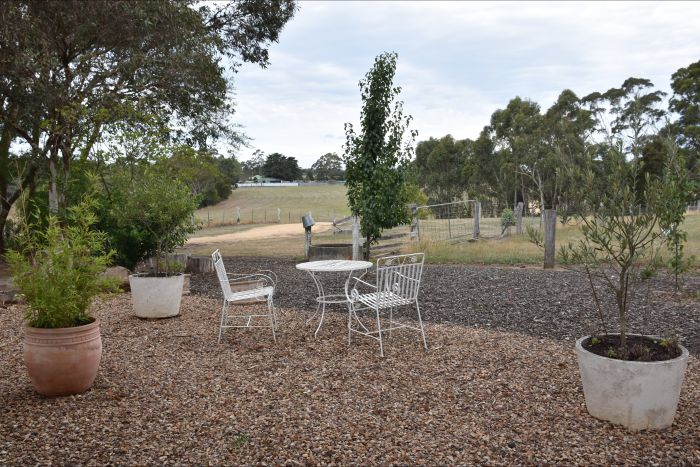 Cygnet Park Country Retreat - Accommodation Batemans Bay