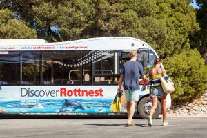 Rottnest Island Tour from Perth or Fremantle including Bus Tour - Accommodation Batemans Bay