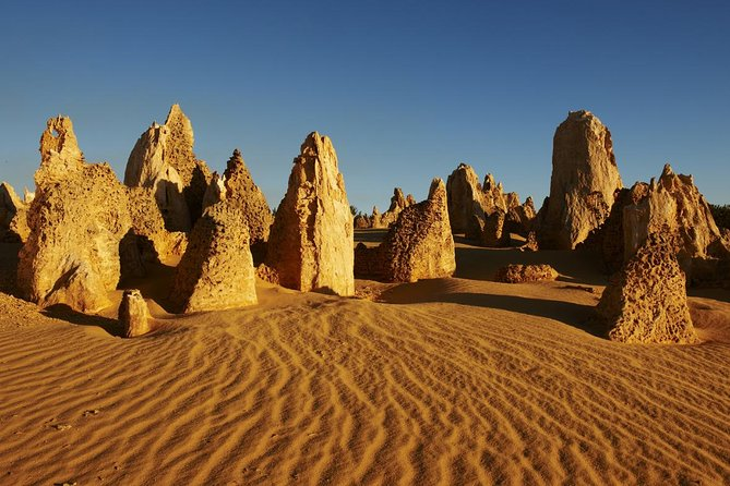 Pinnacles Day Trip from Perth Including Yanchep National Park - Accommodation Batemans Bay