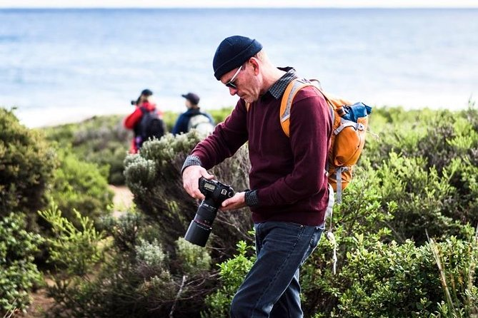Guided Walks on the Cape to Cape - Redgate Beach to Boranup Forest