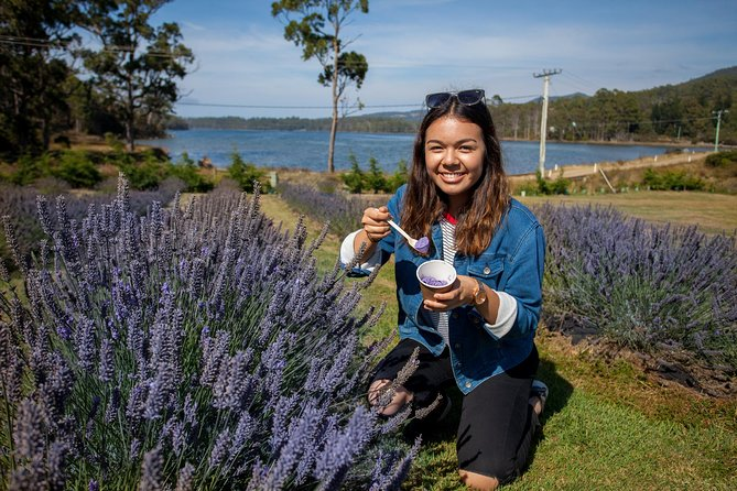 Port Arthur and Lavender Farm Active Day Tour - Accommodation Batemans Bay