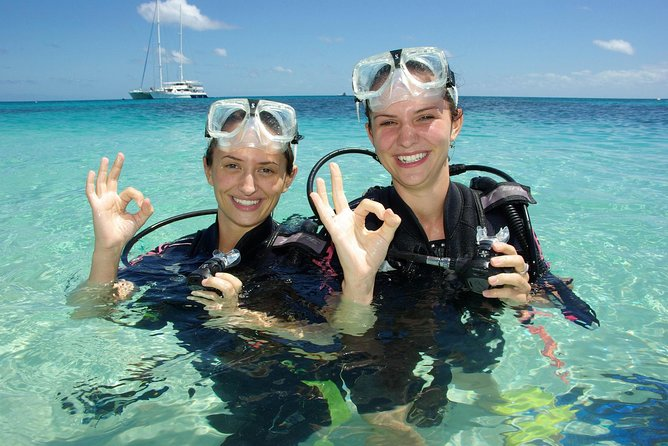 Ocean Spirit Michaelmas Cay Dive and Snorkel Cruise from Palm Cove - Accommodation Batemans Bay