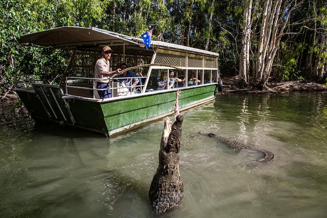 Hartley's Crocodile Adventures Day Trip from Palm Cove - Accommodation Batemans Bay