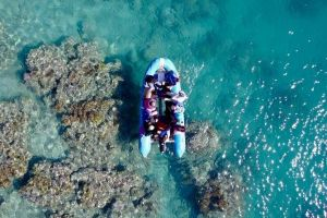 Glass-bottom boat tour with Whitehaven Beach - Accommodation Batemans Bay