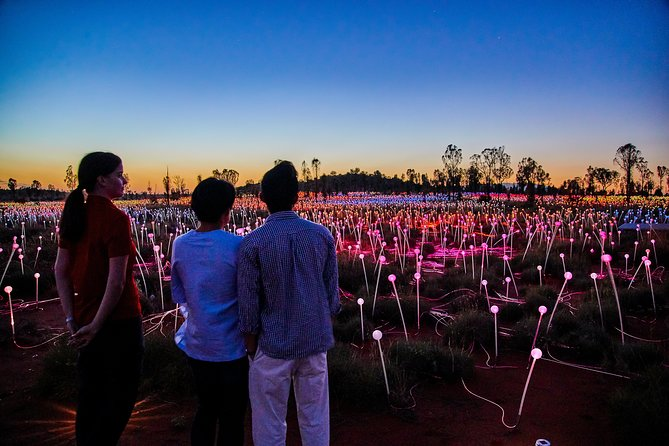 Uluru Field of Light Sunrise Tour - Accommodation Batemans Bay