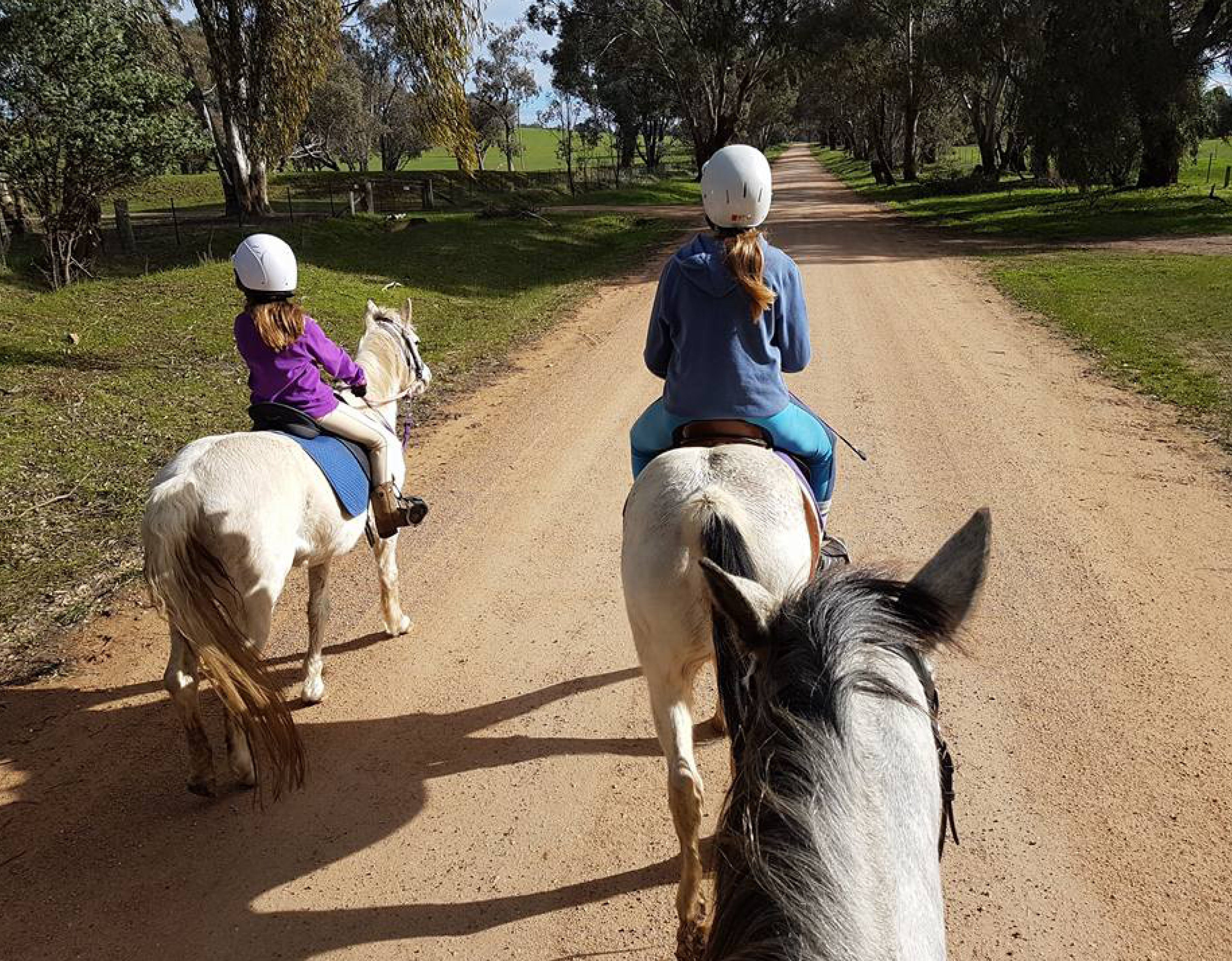 Bits and Boots Pony Rides - Accommodation Batemans Bay