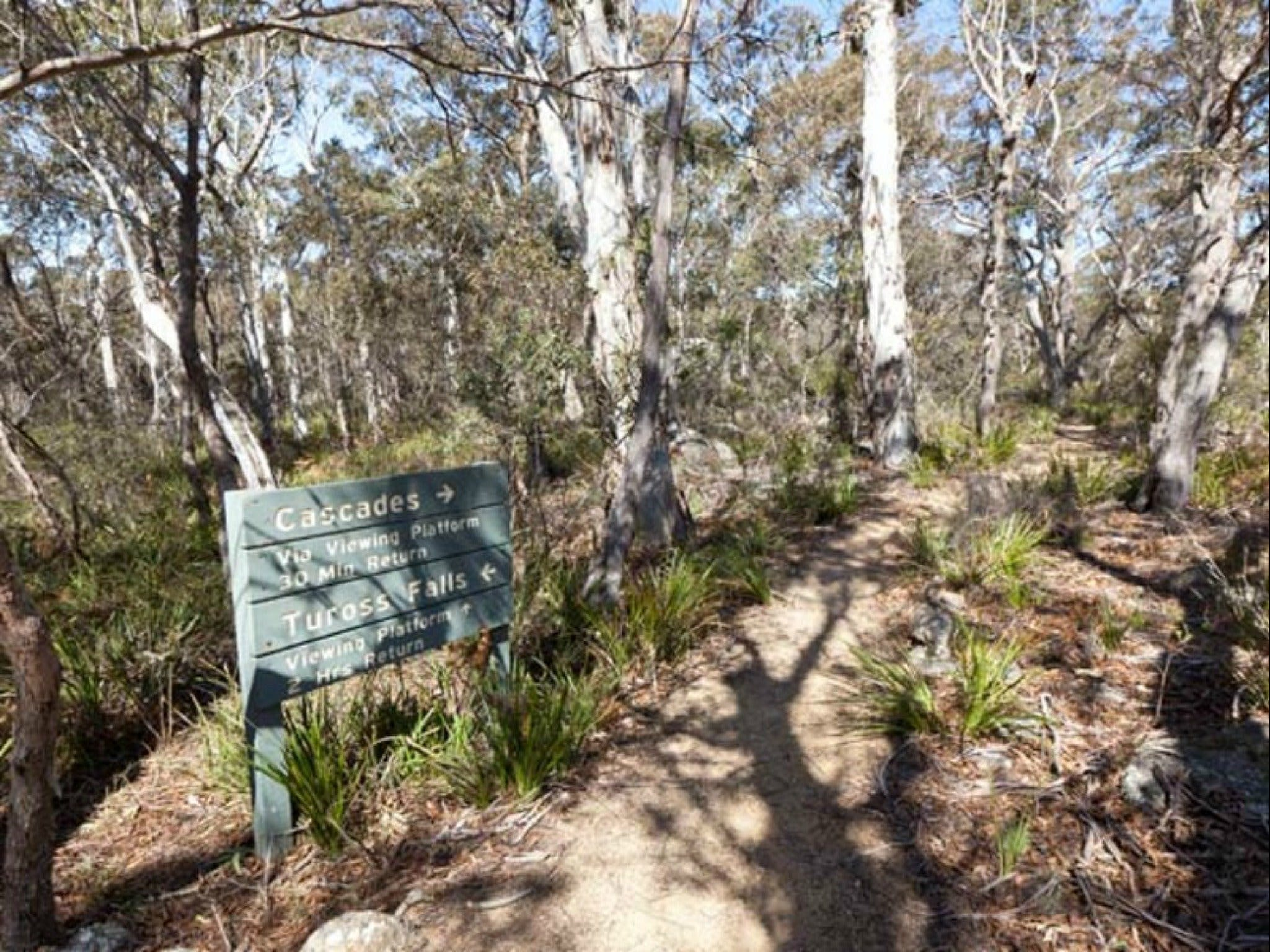 Cascades walking track and viewing platform - Accommodation Batemans Bay