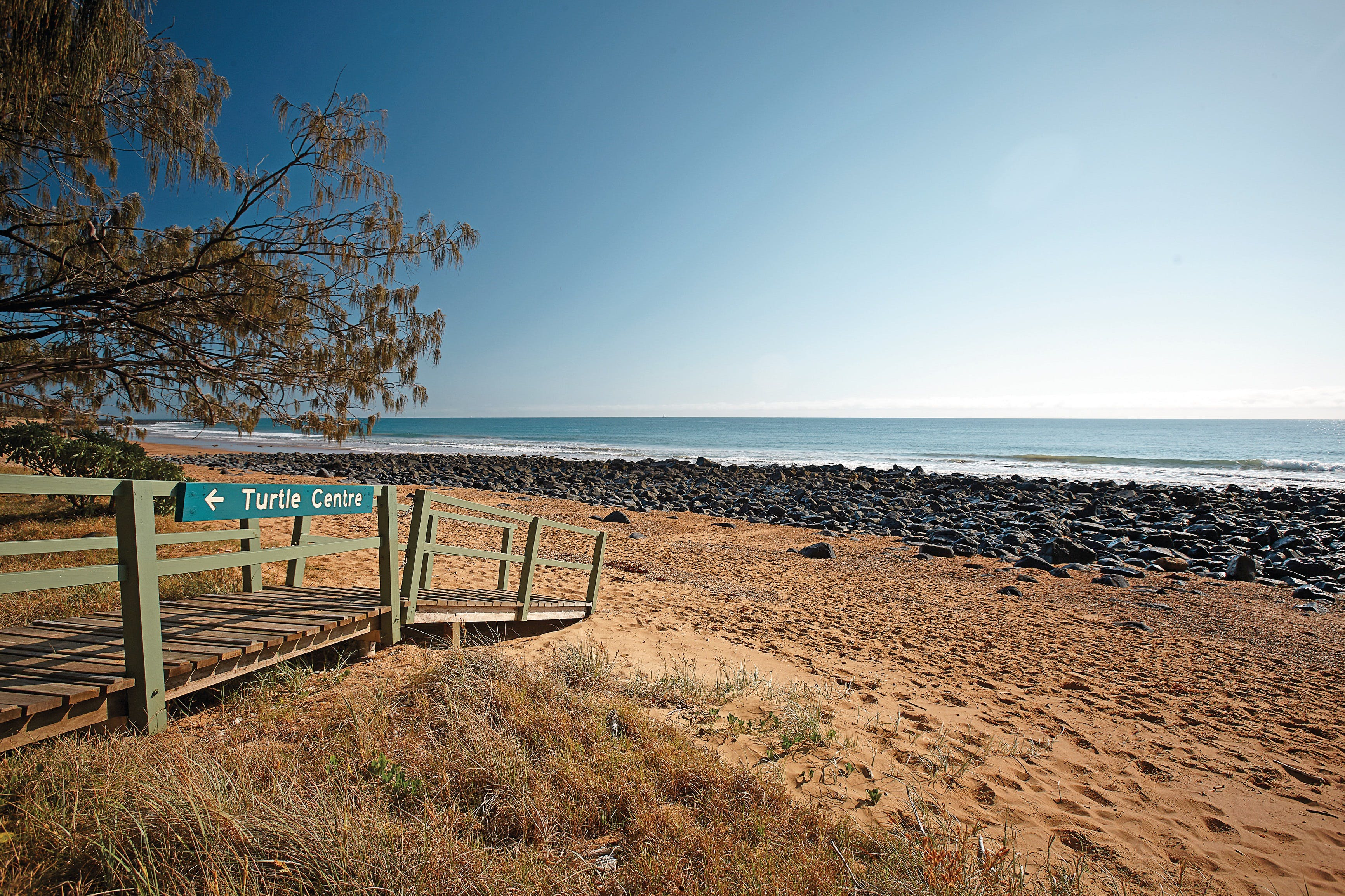 Mon Repos Beach - Accommodation Batemans Bay