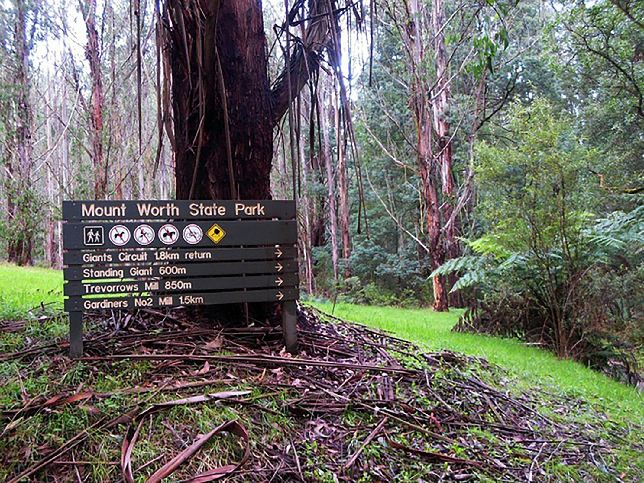 Mount Worth State Park - Accommodation Batemans Bay