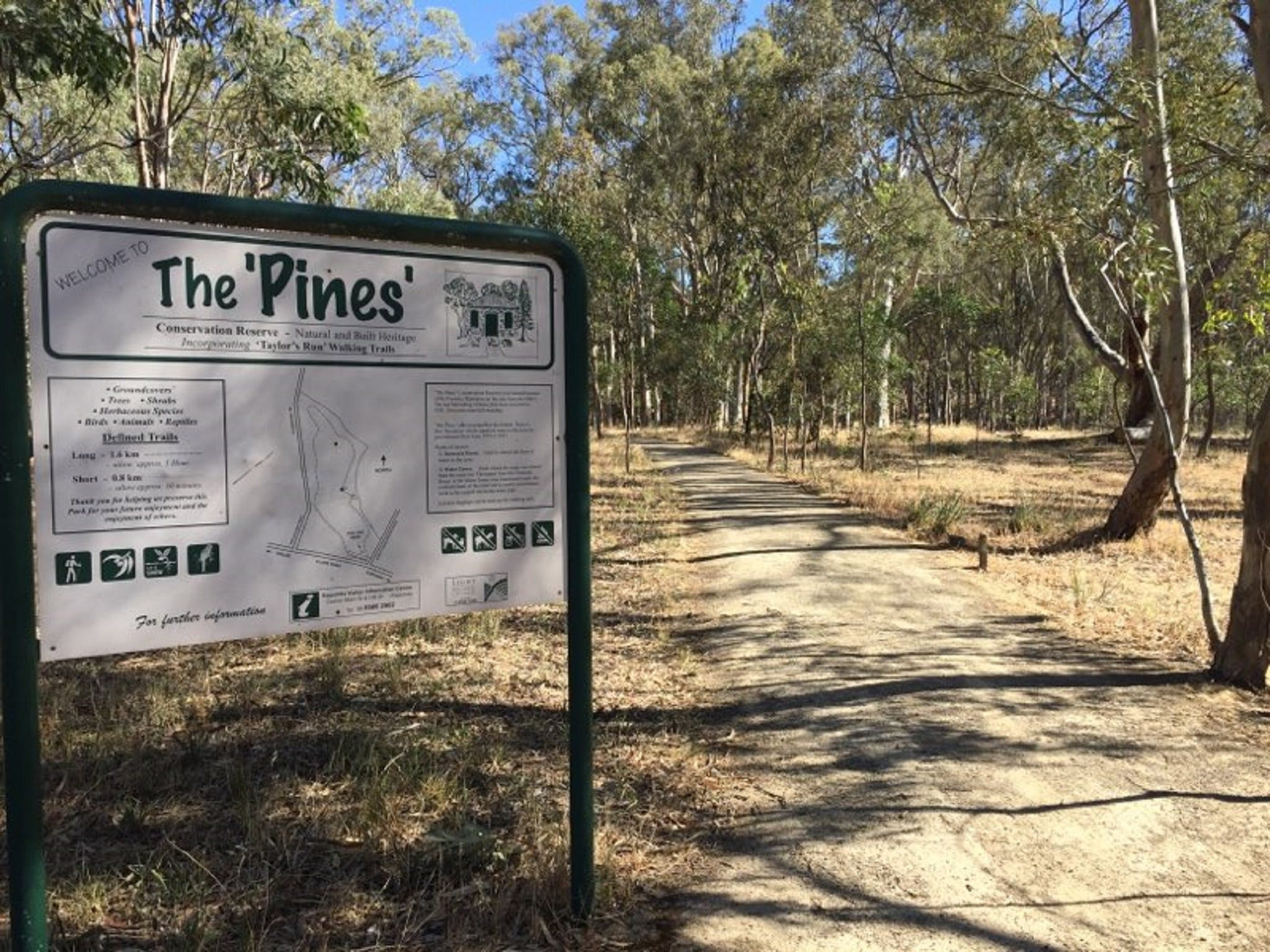 The Pines Conservation Reserve - Accommodation Batemans Bay