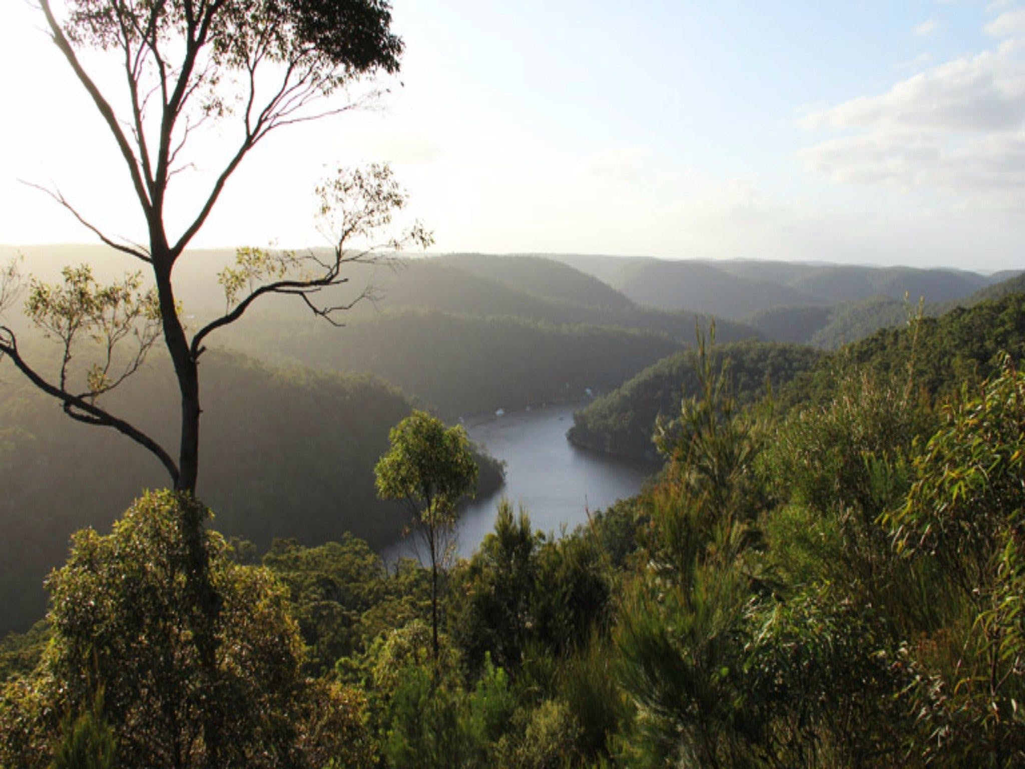 Berowra Valley National Park - Accommodation Batemans Bay