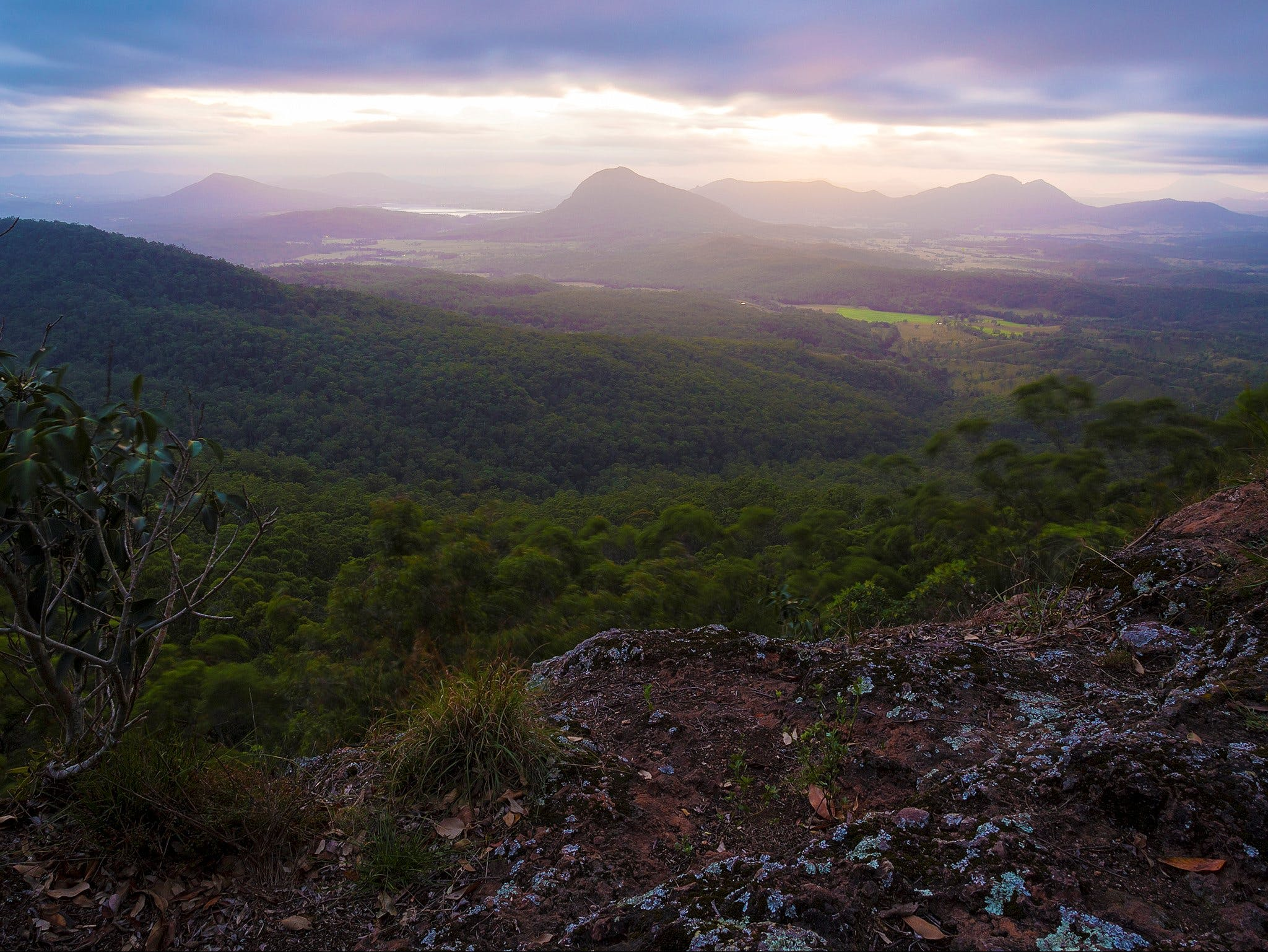 Cunninghams Gap and Spicers Gap Main Range National Park - Accommodation Batemans Bay