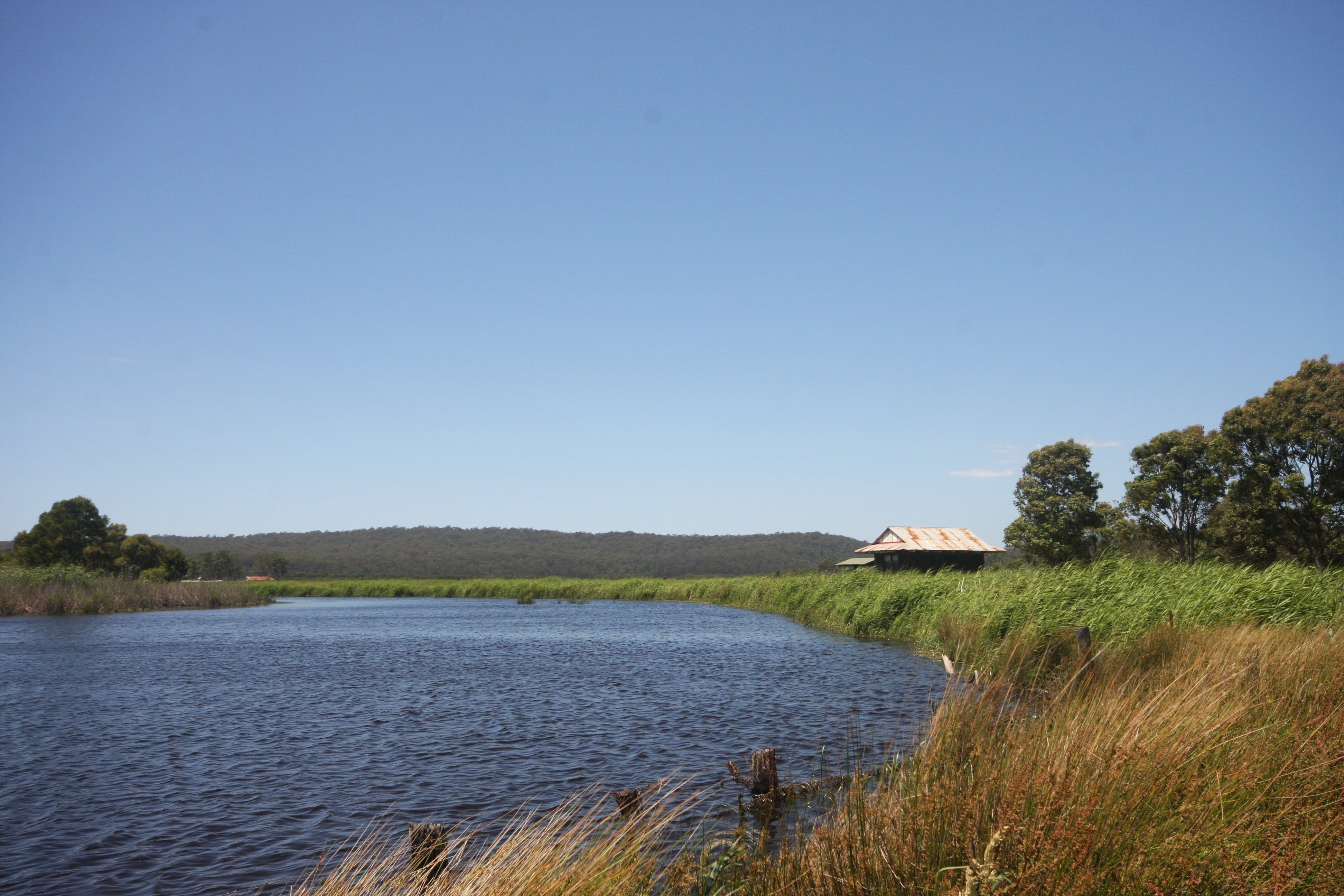 Panboola Wetlands - Accommodation Batemans Bay