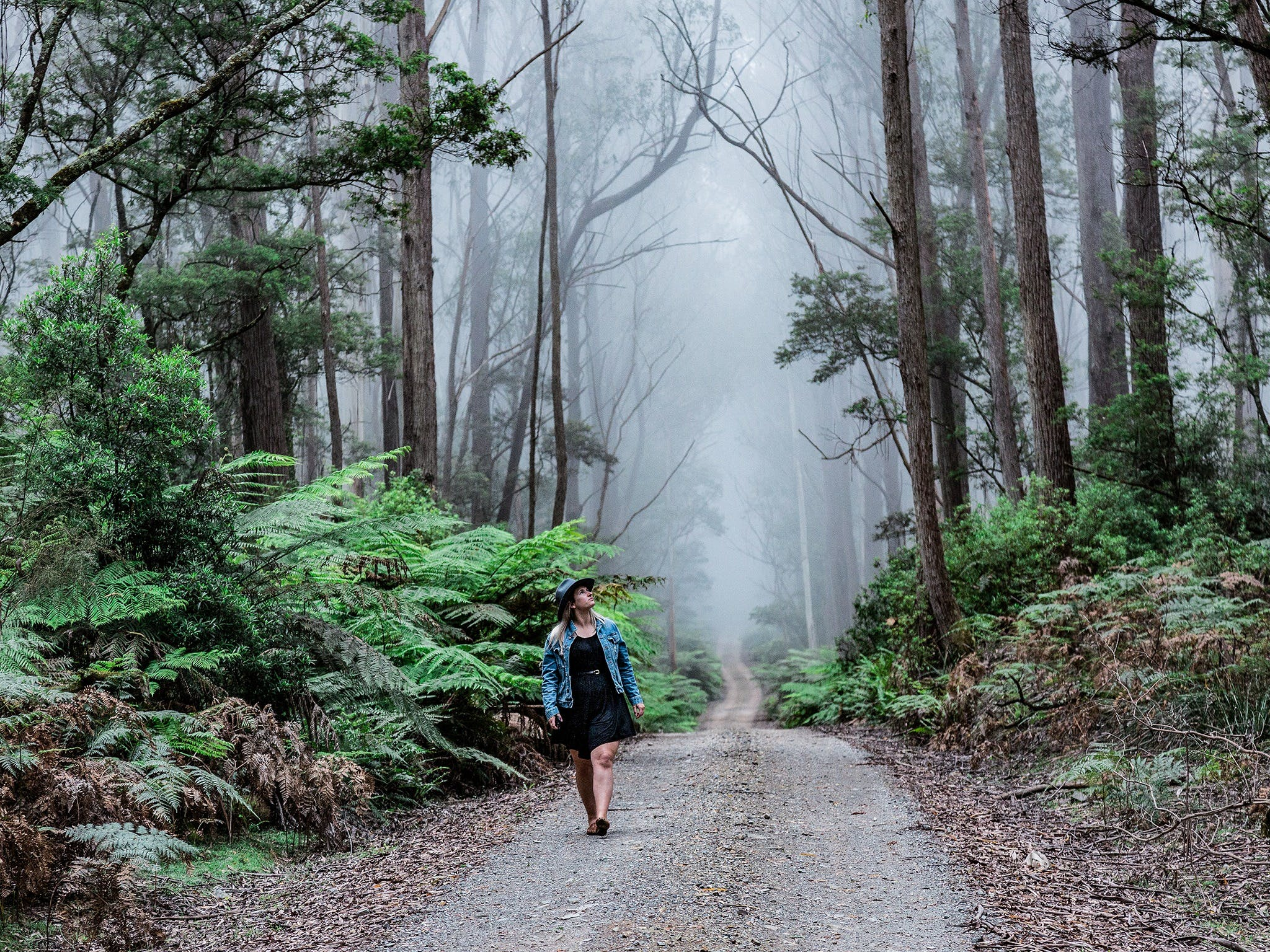 The Corn Trail Walking Track - Accommodation Batemans Bay