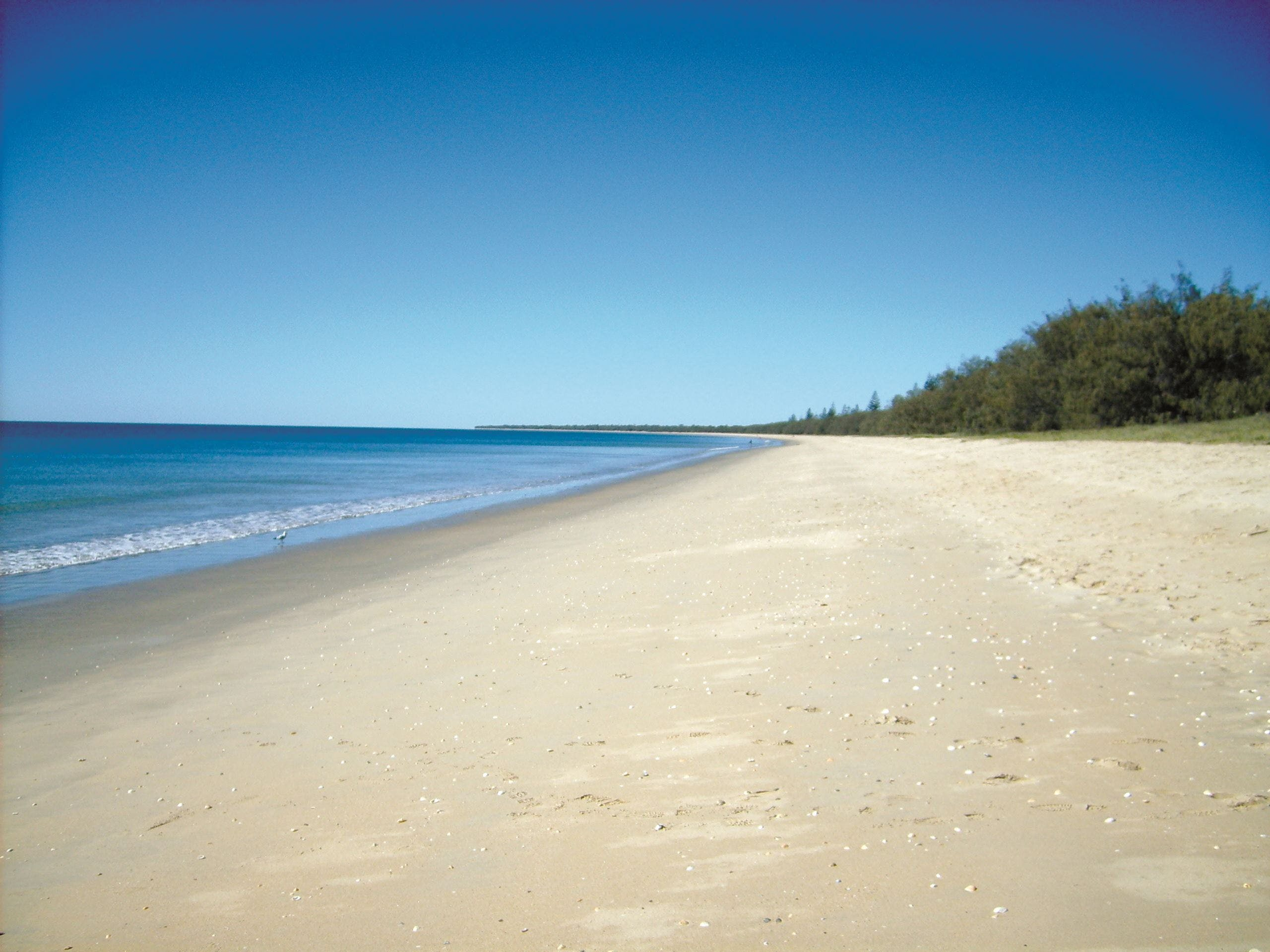 Coral Coast Pathways Woodgate Beach Section - Accommodation Batemans Bay