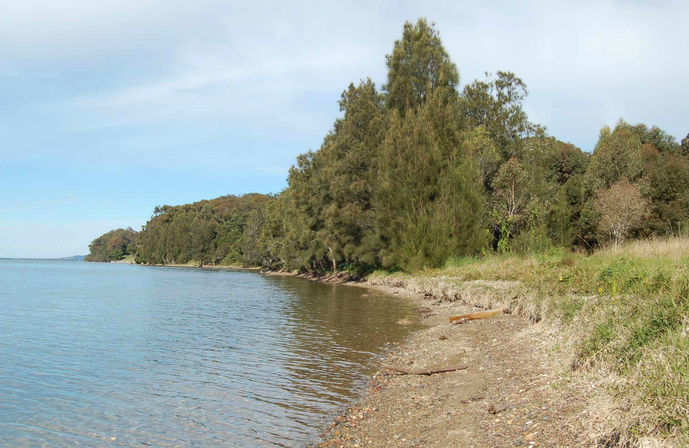 Lake Macquarie State Conservation Area - Accommodation Batemans Bay
