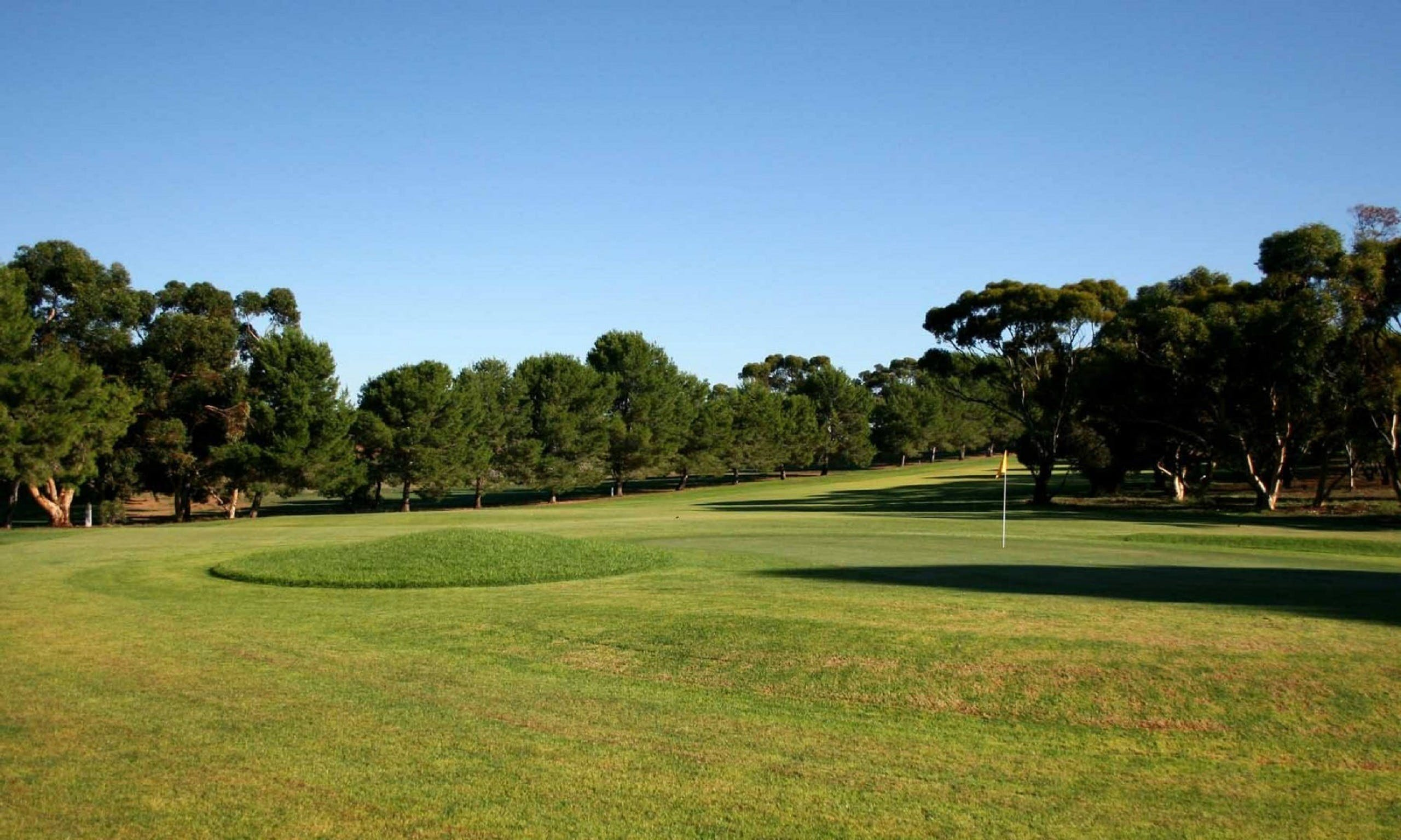 Mannum Golf Club - Accommodation Batemans Bay