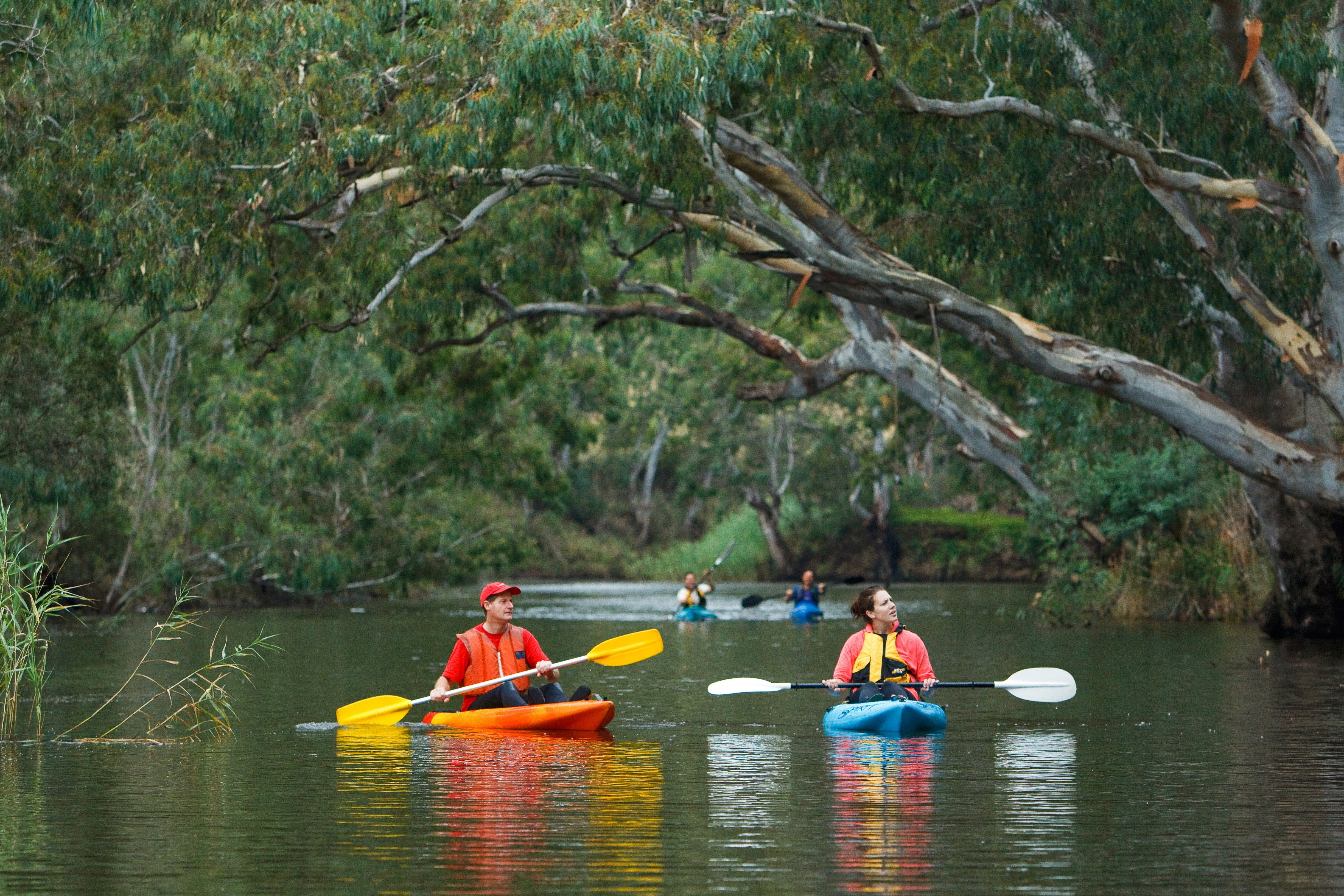 Maribyrnong River - Accommodation Batemans Bay