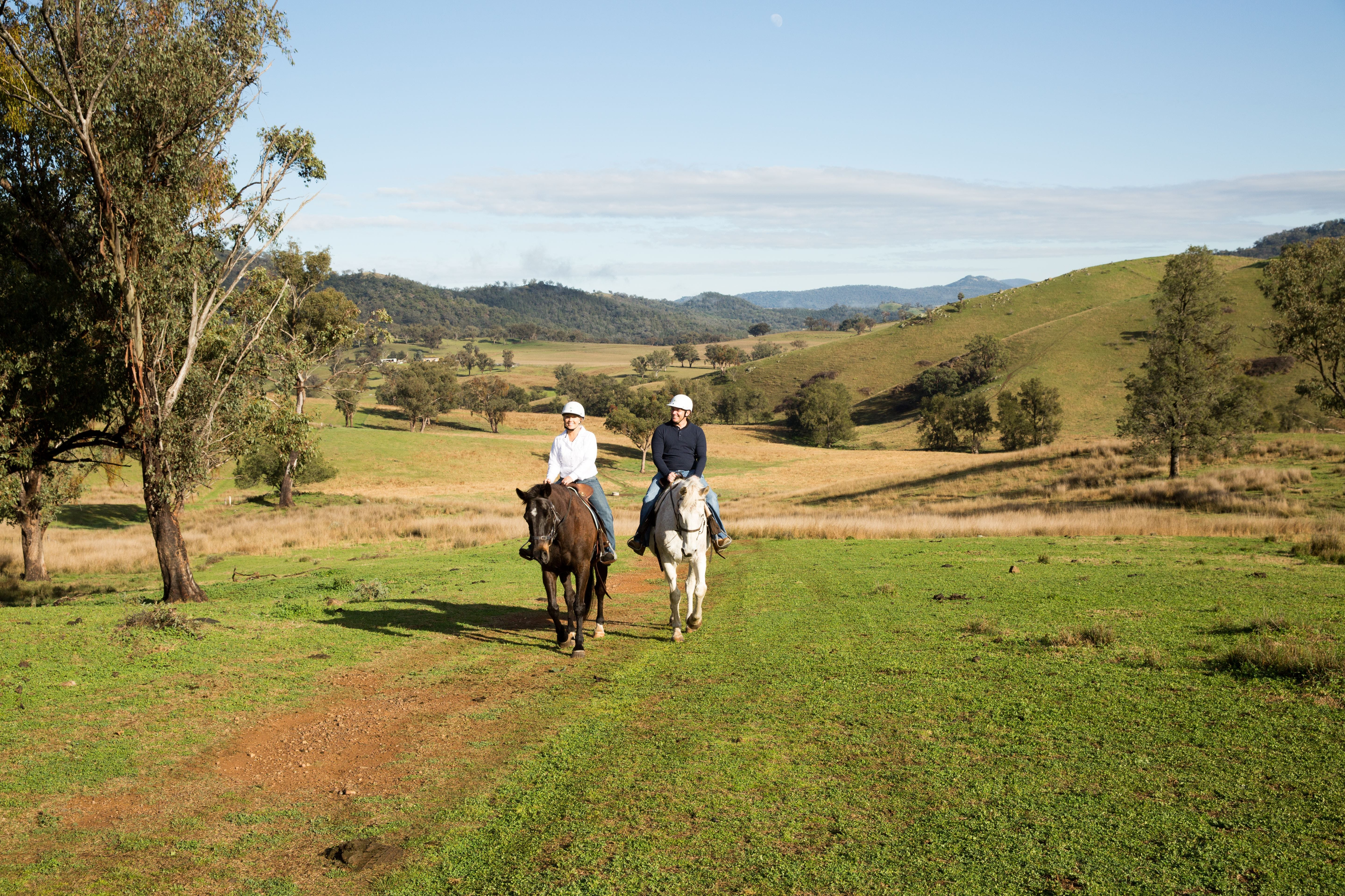 Tamworth and Kootingal Horse Riding Adventures - Accommodation Batemans Bay