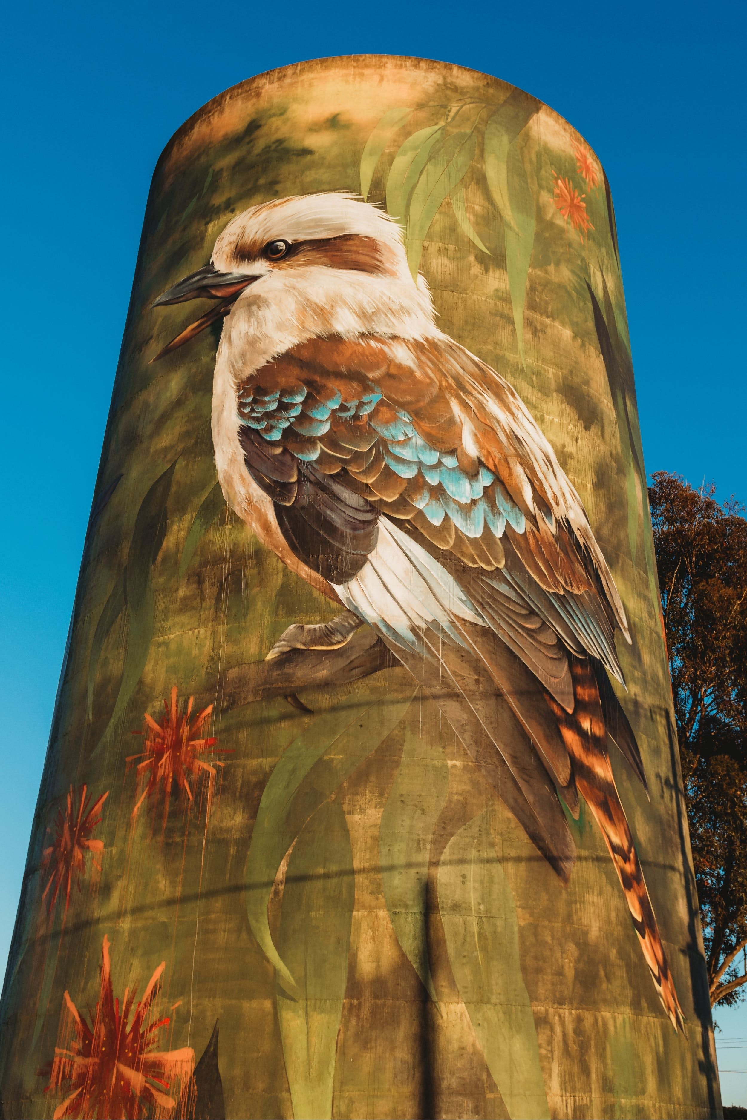 Deniliquin Water Tower Mural - Accommodation Batemans Bay
