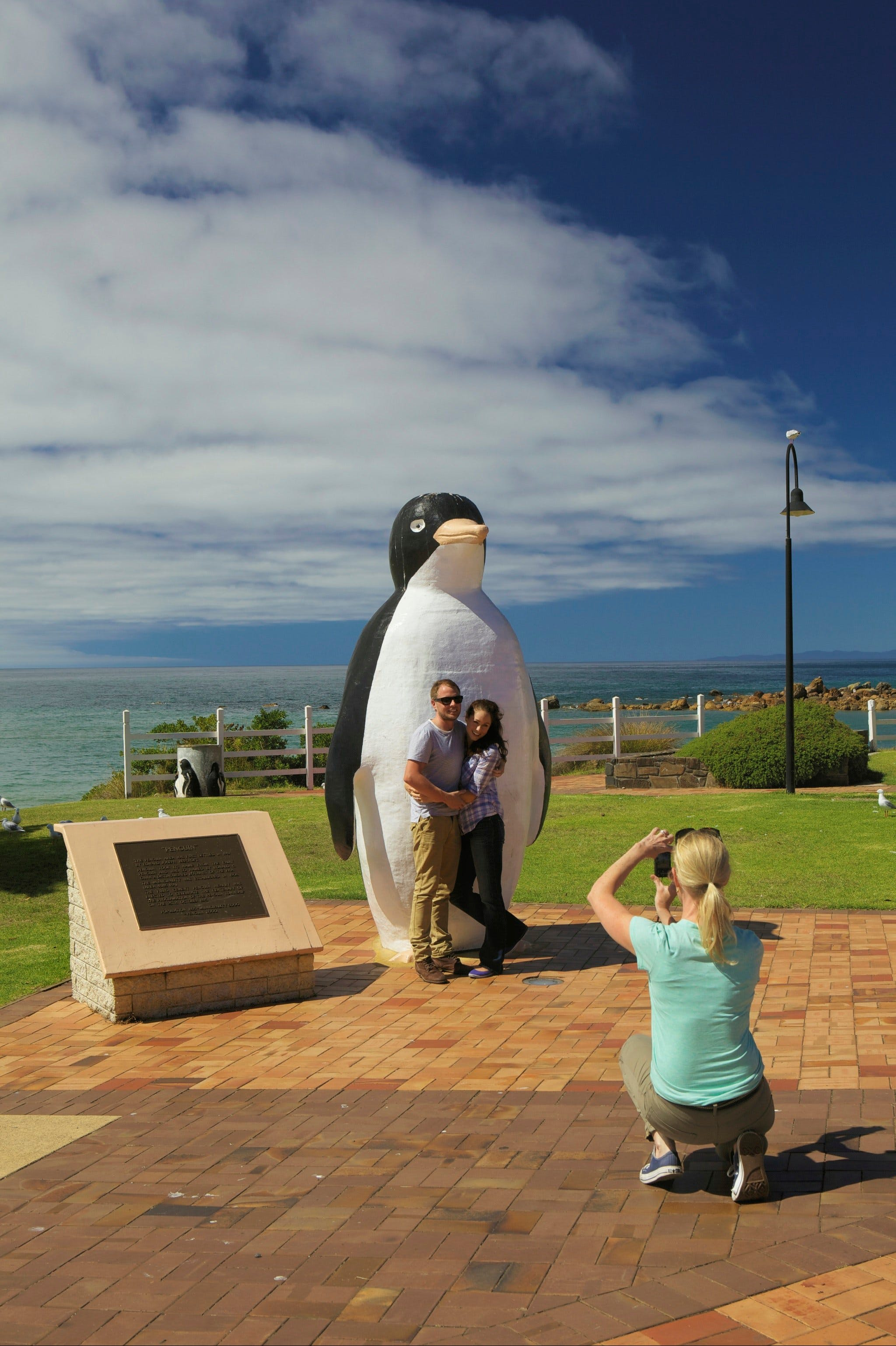 Penguin - Accommodation Batemans Bay