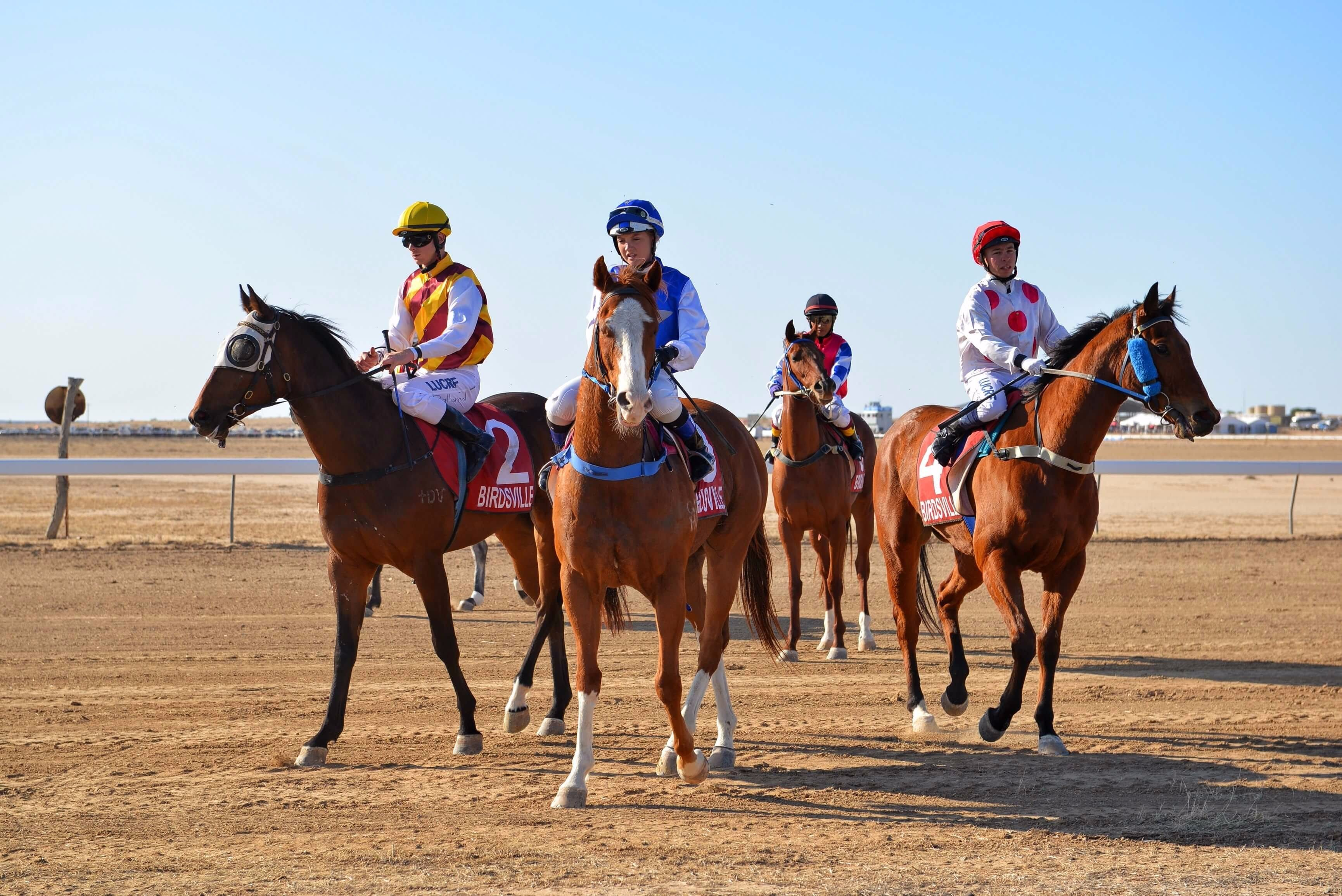 Simpson Desert Racing Carnival Trail - Accommodation Batemans Bay