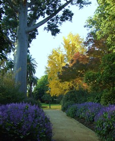 Albury Botanic Garden - Accommodation Batemans Bay