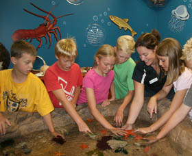 Naturaliste Marine Discovery Centre