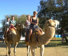 Calamunnda Camel Farm - Accommodation Batemans Bay