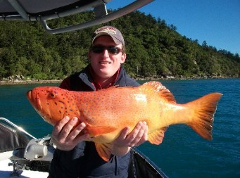 Gone Fishing by Coral Sea Fishing Charters Airlie Beach - Accommodation Batemans Bay