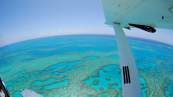 Air Whitsunday Day Tours - Accommodation Batemans Bay