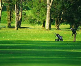 Foster Golf Club - Accommodation Batemans Bay