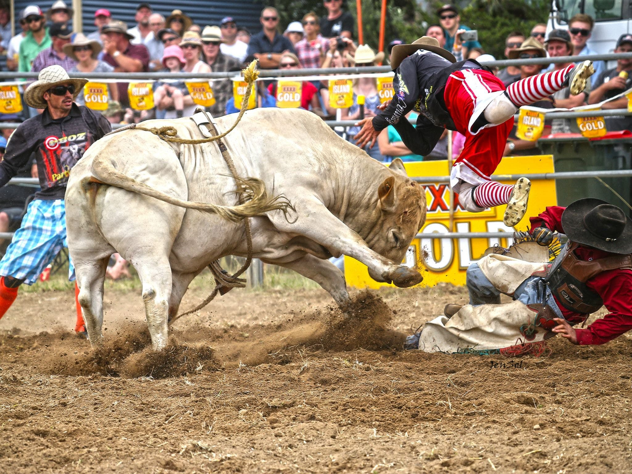 Jindabyne's Man From Snowy River Rodeo - Accommodation Batemans Bay