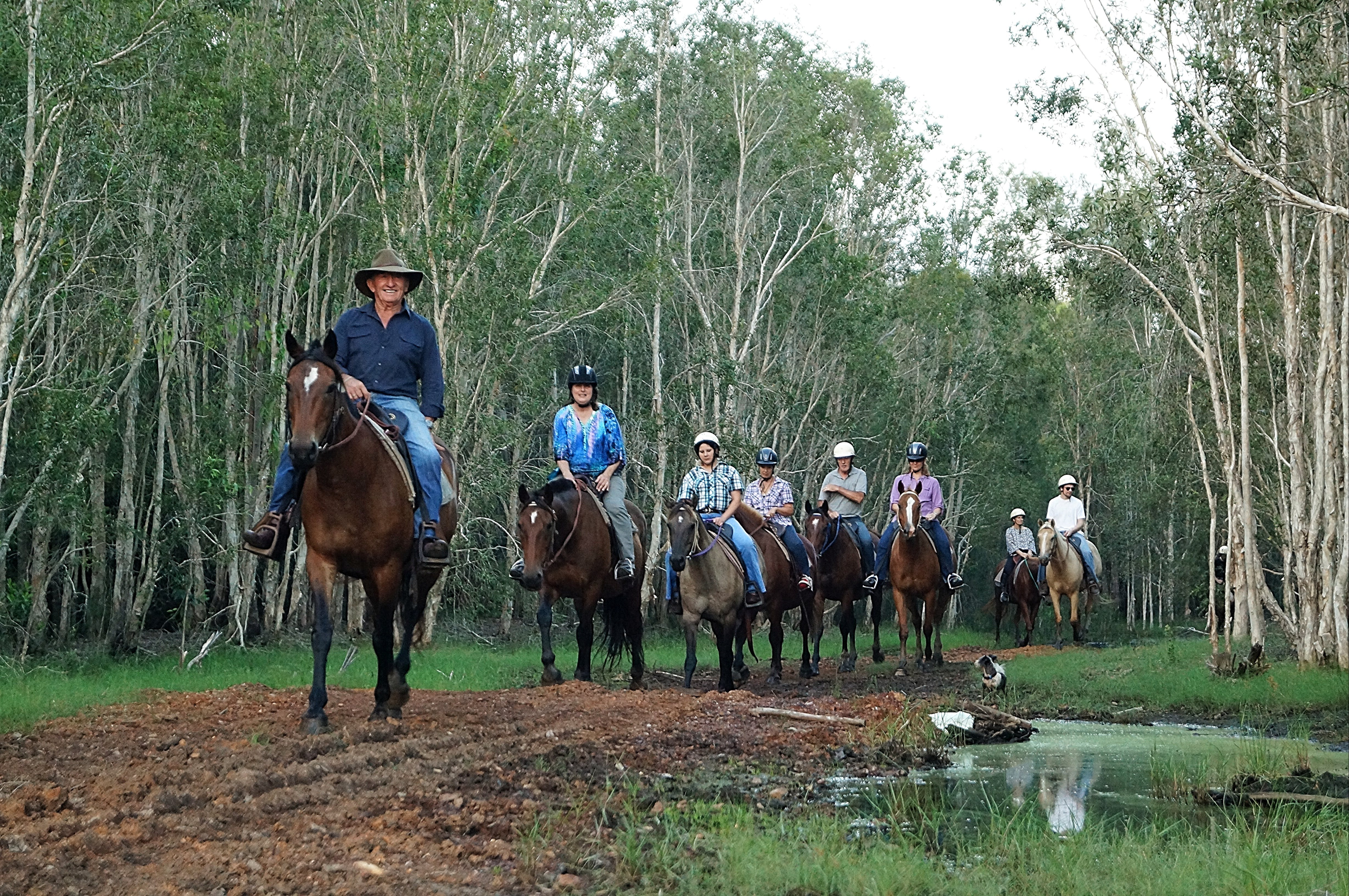 Night Horse Ride and Dinner - Accommodation Batemans Bay