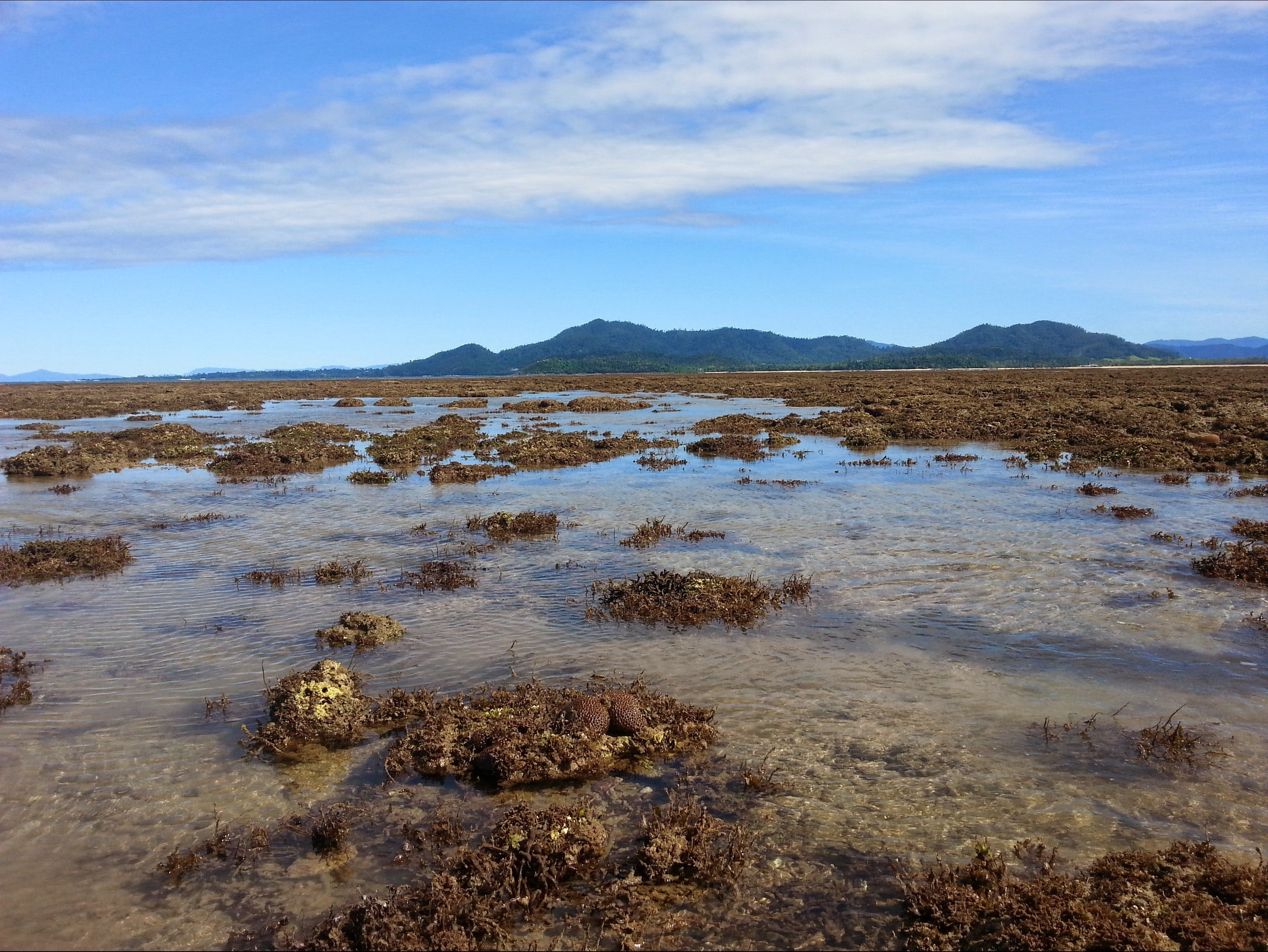 Walk to the Reef - Accommodation Batemans Bay