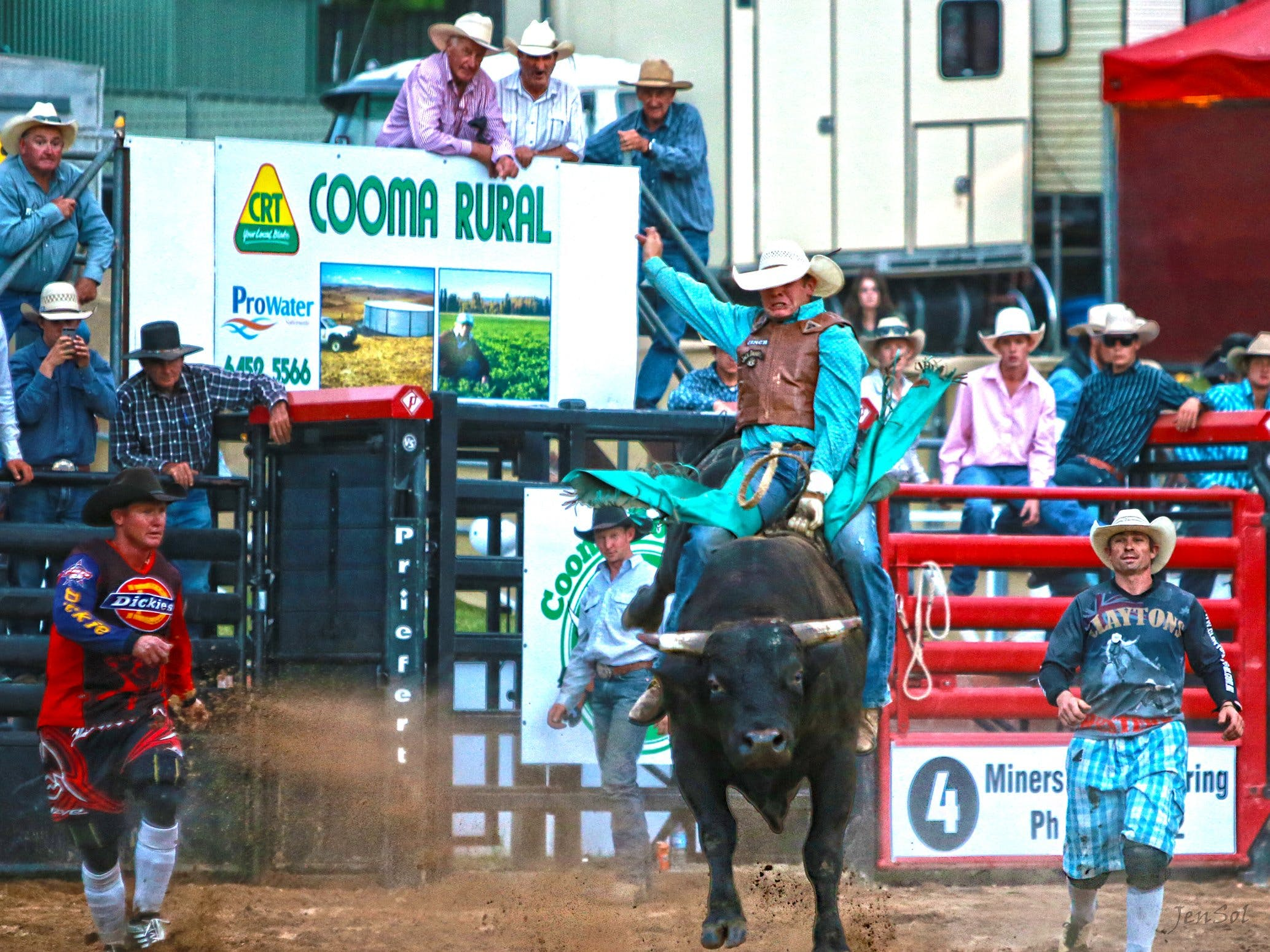 AgriWest Cooma Rodeo - Accommodation Batemans Bay