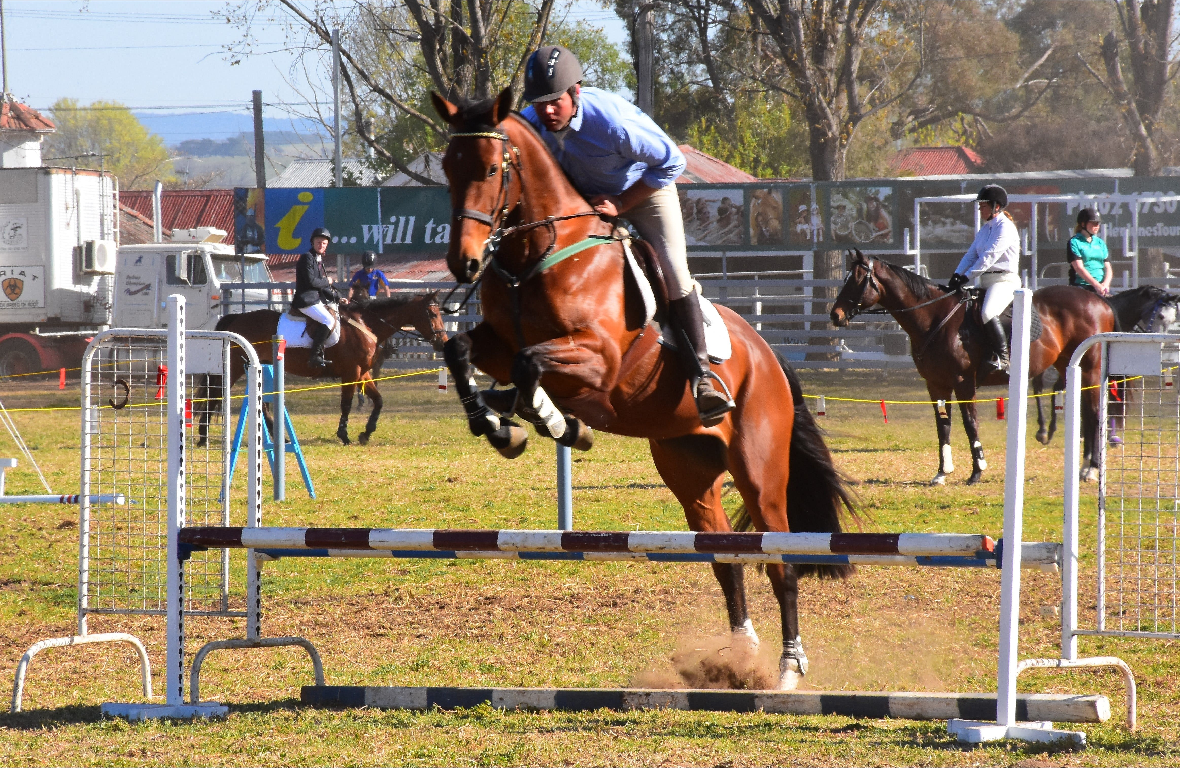 Glen Innes Pastoral and Agricultural Show - Accommodation Batemans Bay