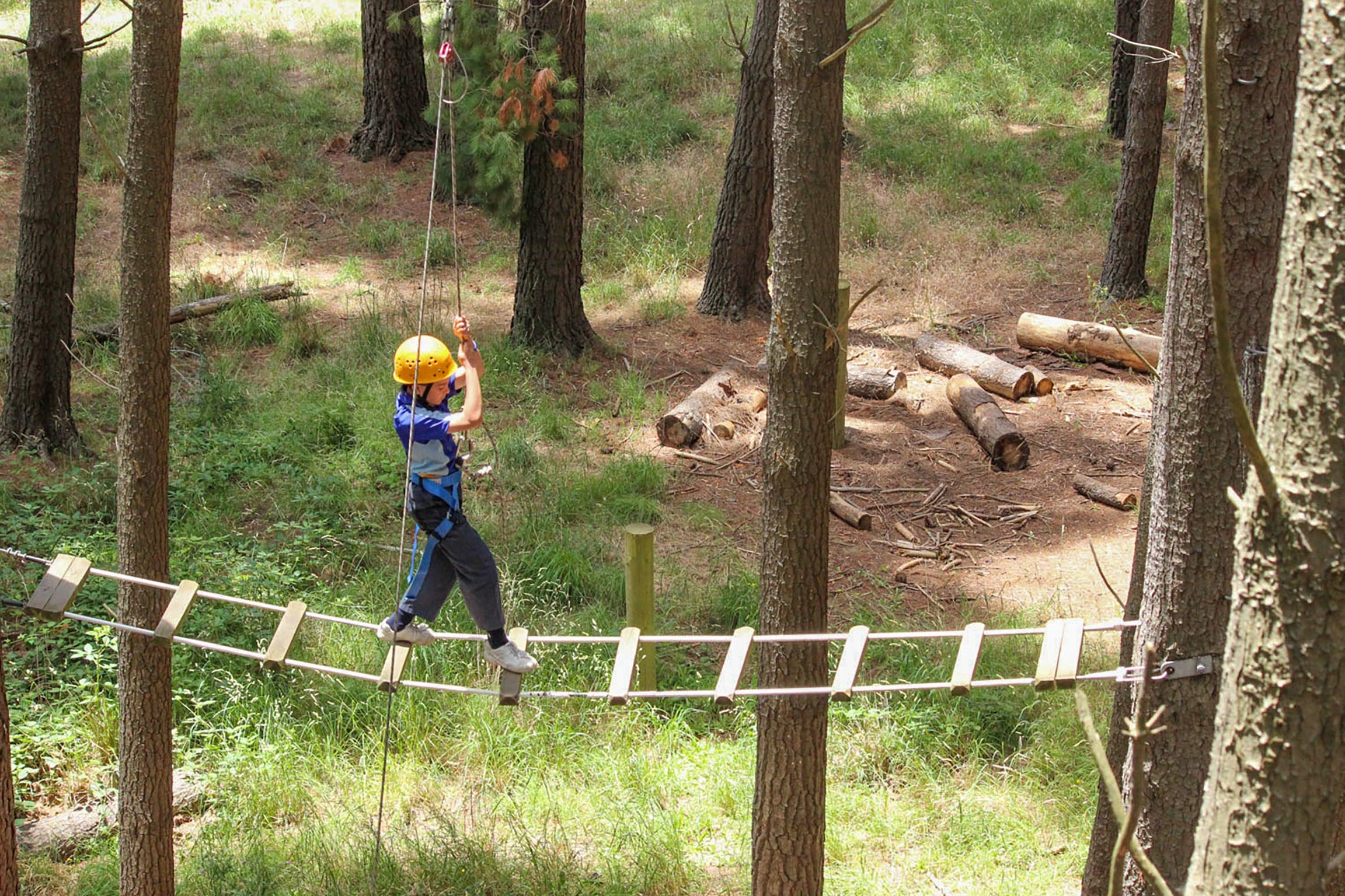 July 2020 Holidays- Go Wild at the Mt Lofty Adventure Hub - Accommodation Batemans Bay