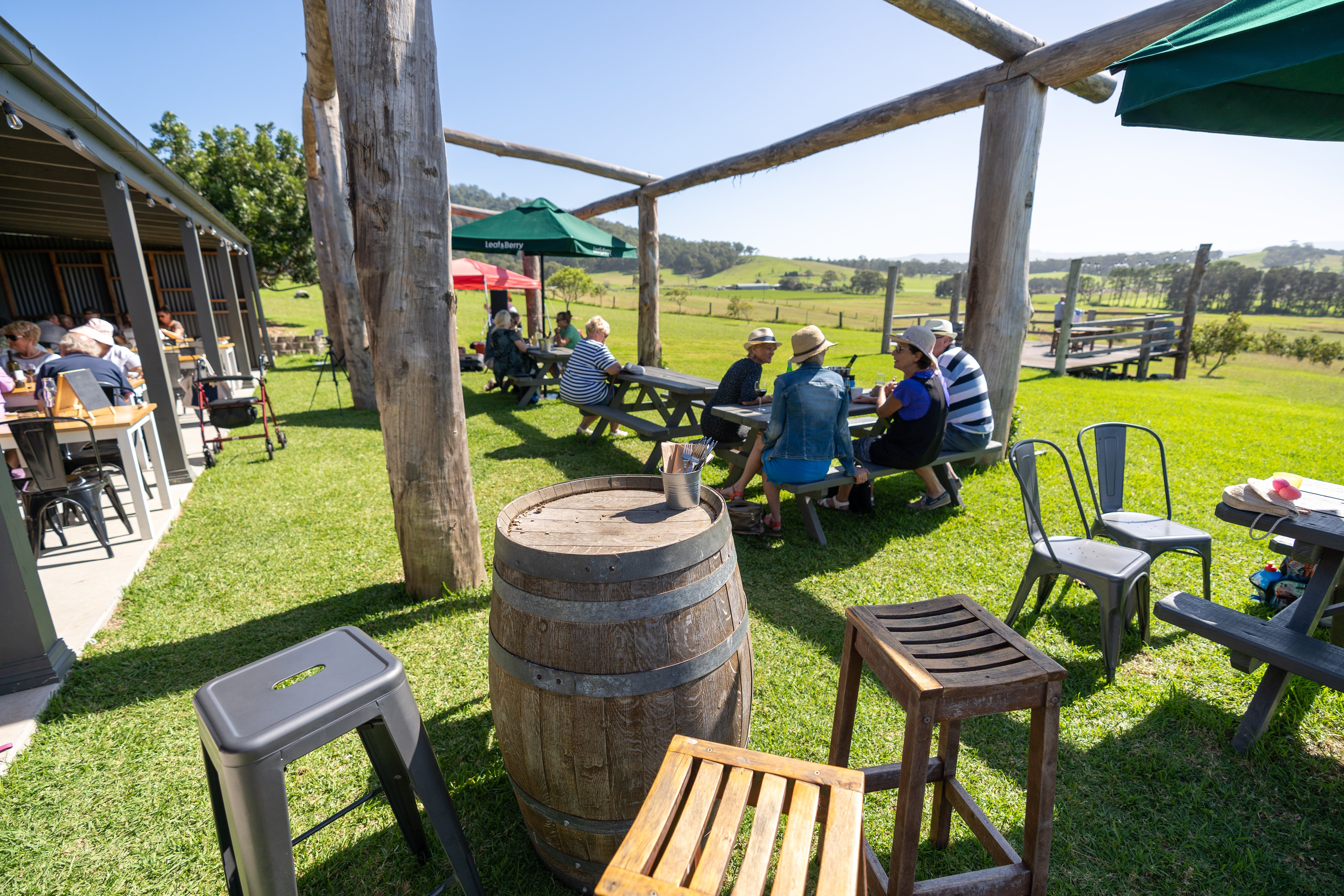 Live Music Sundays at Mountain Ridge Wines - Accommodation Batemans Bay