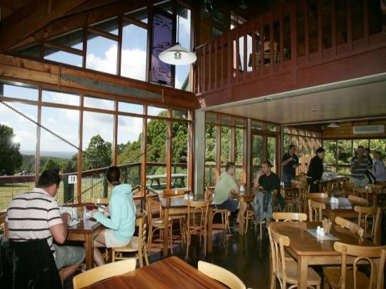 blackwood gully tea room - Accommodation Batemans Bay