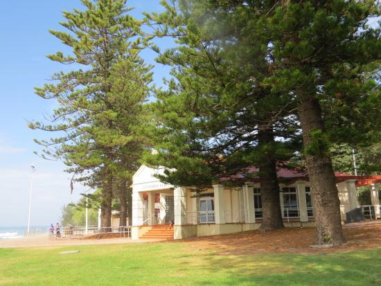 Shells Diner - Accommodation Batemans Bay