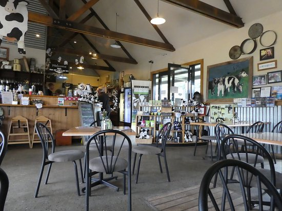 Holy Cow Cafe - Accommodation Batemans Bay