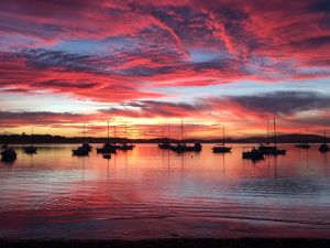 Ambience - Accommodation Batemans Bay