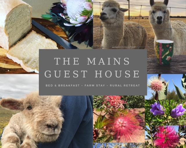 The Mains Guest House - Accommodation Batemans Bay